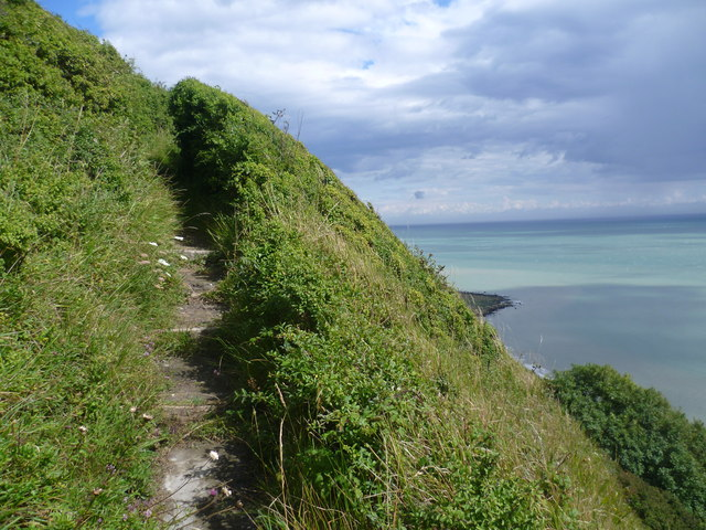 Steps up the cliff at Folkestone Warren
