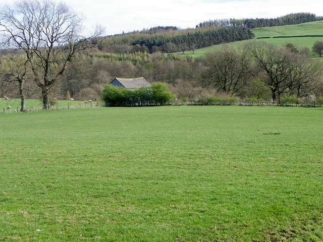 Pasture near Leighton