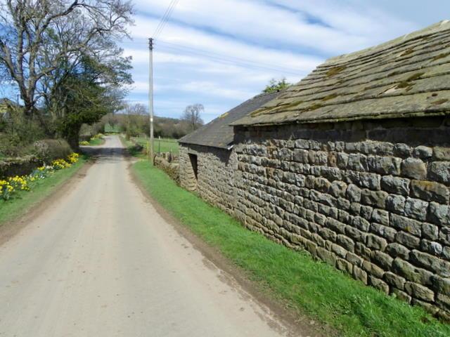 Minor road, Leighton Hall Farm