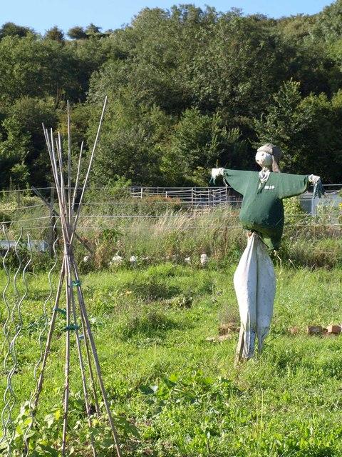 Scarecrow, Axbridge