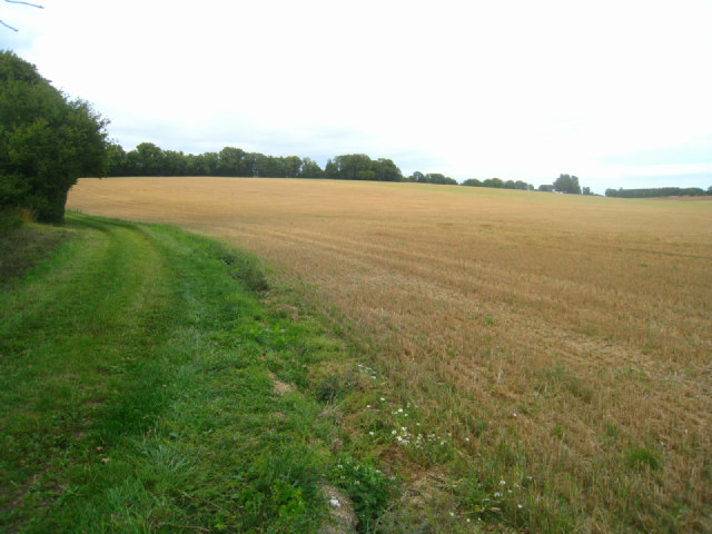 Recently harvested field