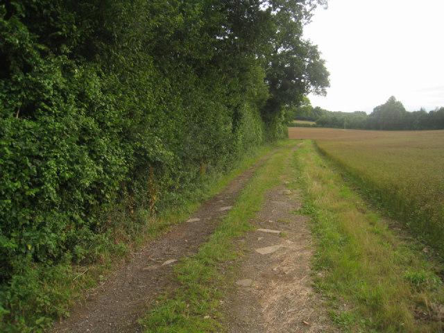 Track/path to Malshanger Lane