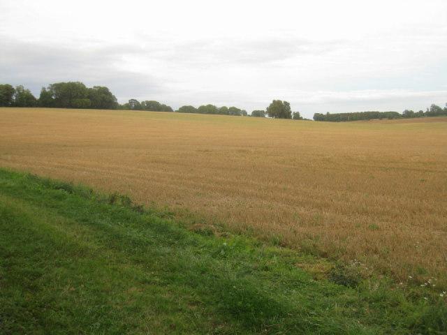 Farmland near Manydown Park