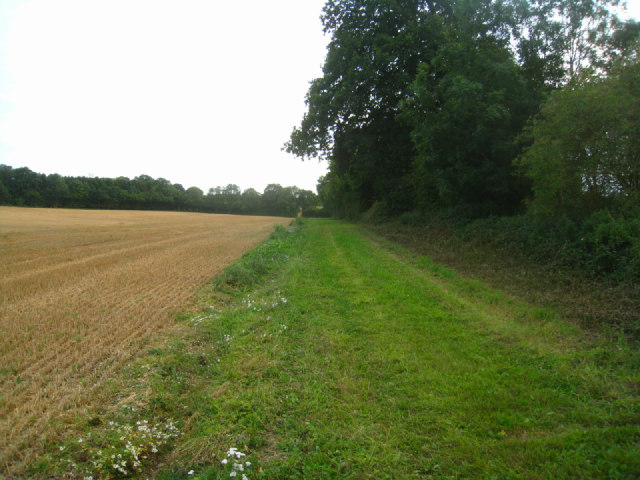 Wide field boundary