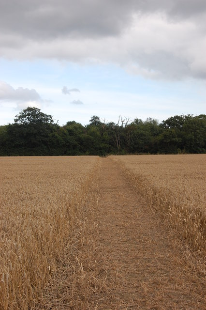 Footpath to Dove Wood
