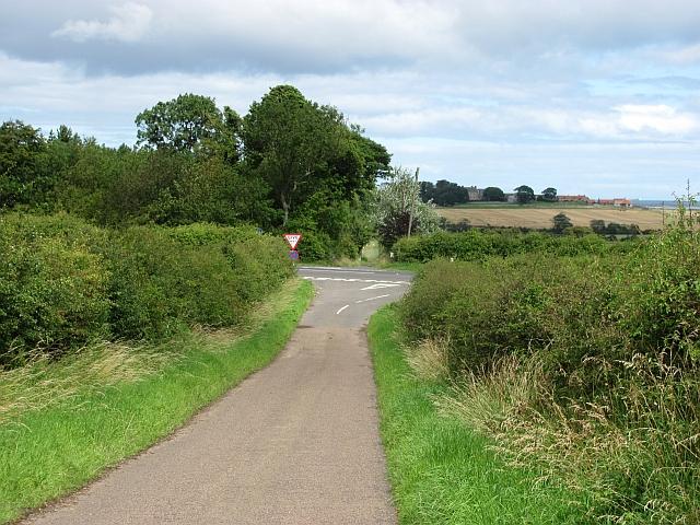 A1 passes Islay Hill plantation