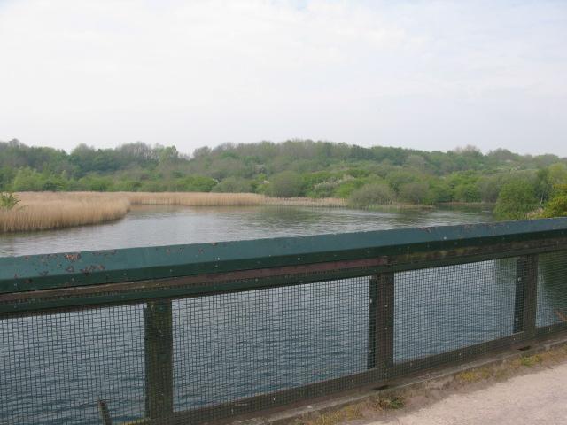 Cosmeston Lake from the footbridge