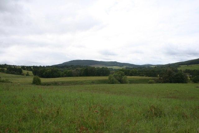 Field by Georgetown