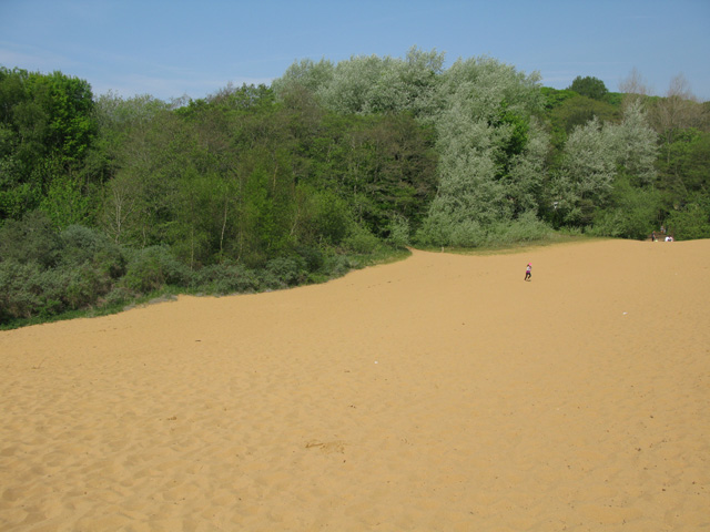 View across the sand dunes towards the car park