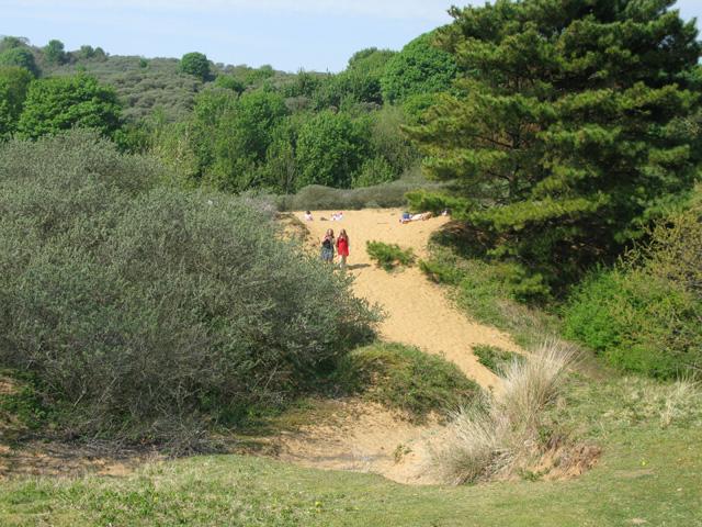 Sand dunes at the Merthyr Mawr National Nature Reserve