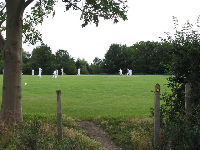 Cricket at Fen Ditton