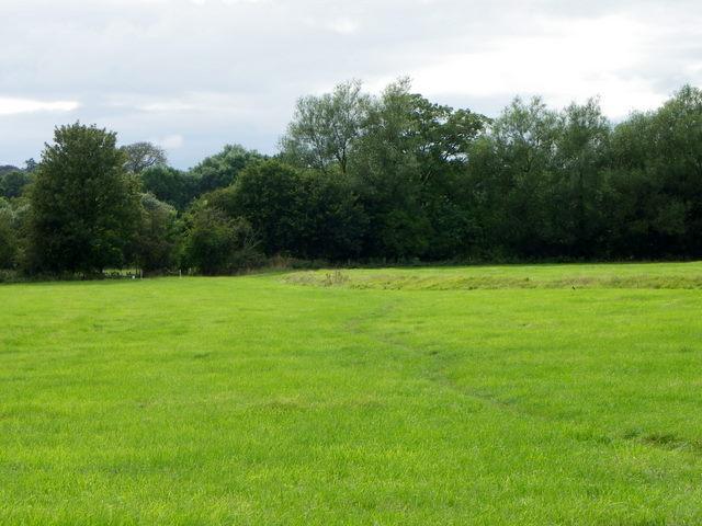 Footpath, Higher Marsh
