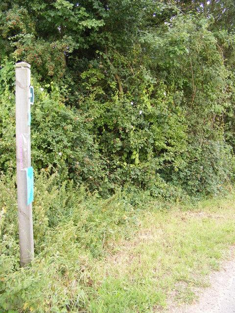 Footpath to the B1077 & Highrow Wood