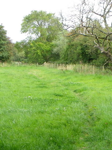 Footpath, Higher Marsh