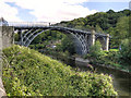 SJ6703 : The Iron Bridge by David Dixon