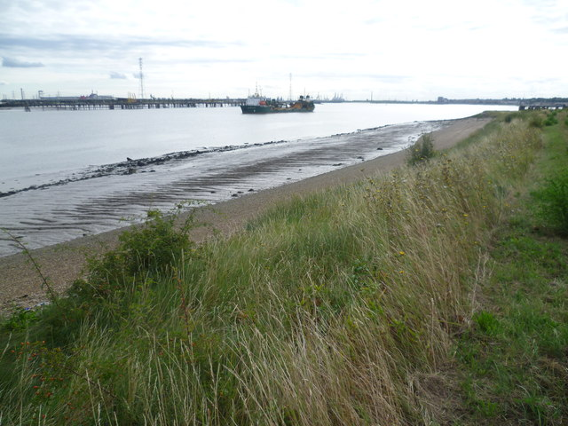 River Thames at Stone Marshes