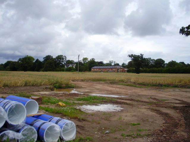 Field of wheat near Hooton