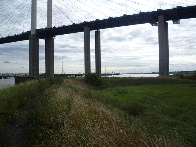 Queen Elizabeth II Bridge from the riverbank beneath