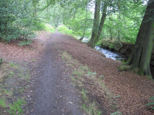Footpath beside River Holme