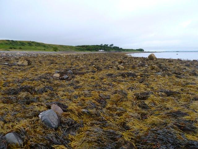 North of Drumantrae Bay