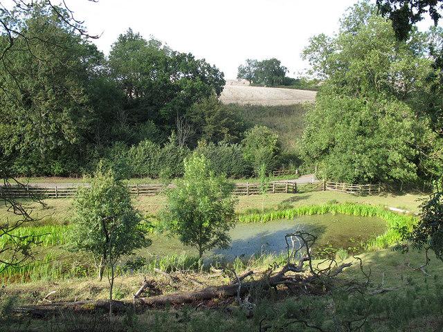 Launde Lower Reservoir