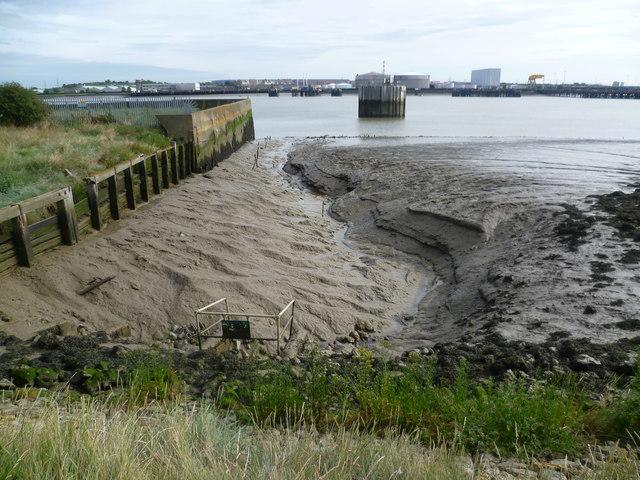 Tidal mud