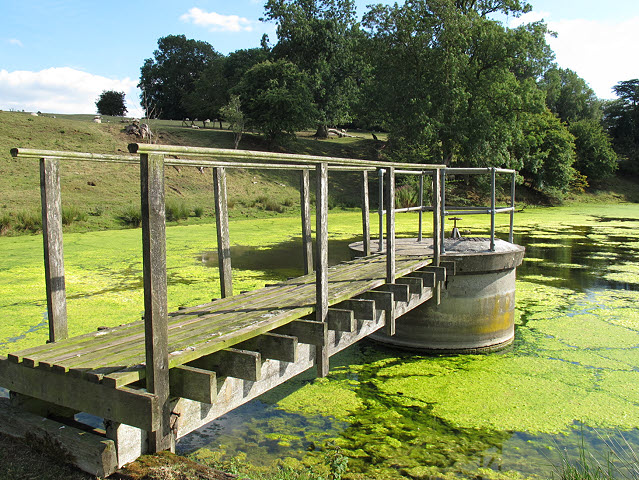 Launde Upper Reservoir - drawoff