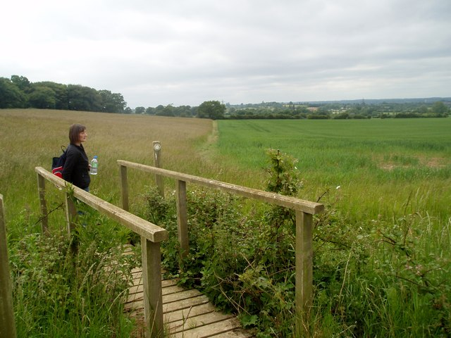 Nazeingwood Common