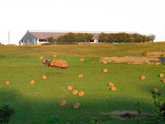 Abbey Farm - bringing in the hay