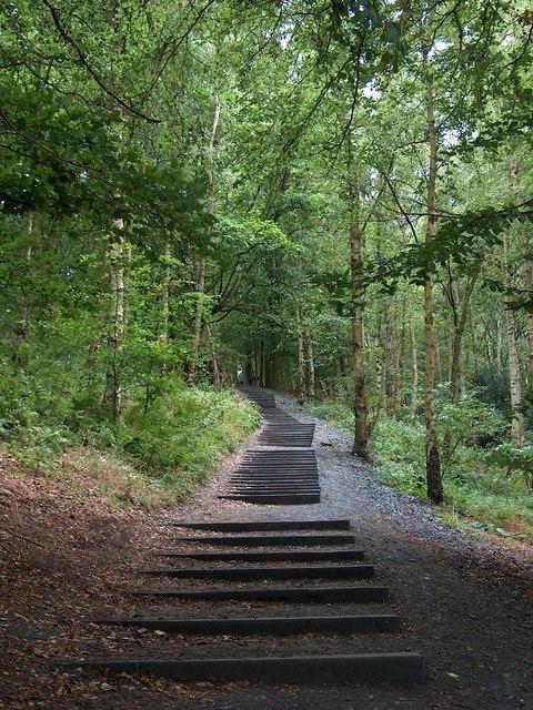 """Seventy One Steps"" by David Nash - Yorkshire Sculpture Park"