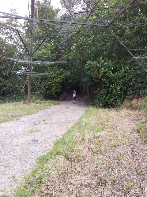 Footpath under electricity pylons