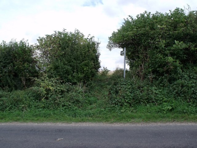 Overgrown access to Footpath, North Carlton