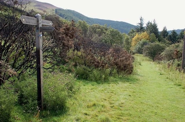 Meigle Circular walk at Caddonfoot
