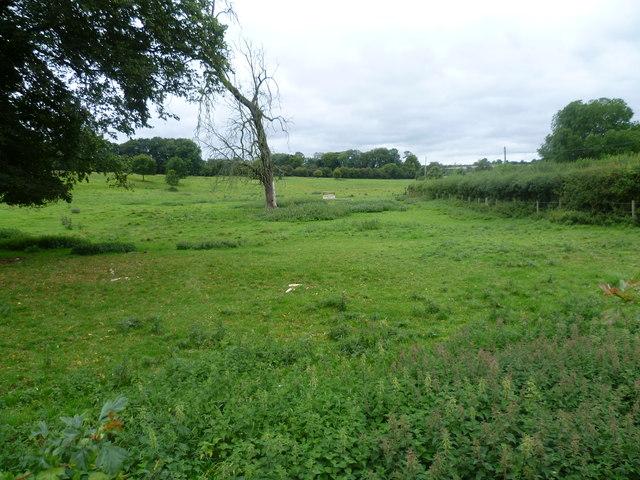 Jane Austen's birthplace was here