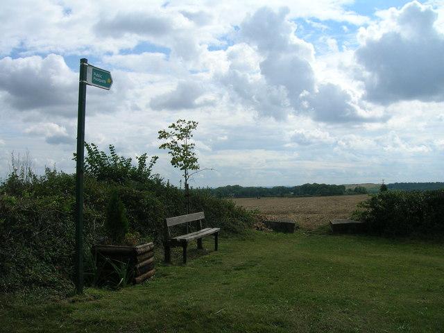 Footpath towards Buckwood Farm