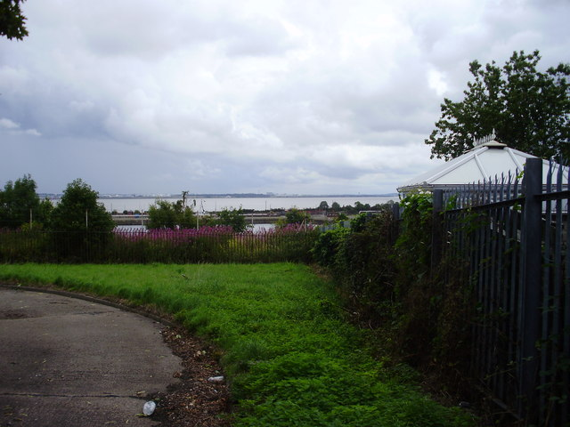 The Mersey and Queen Elizabeth Dock from Mayfield Drive