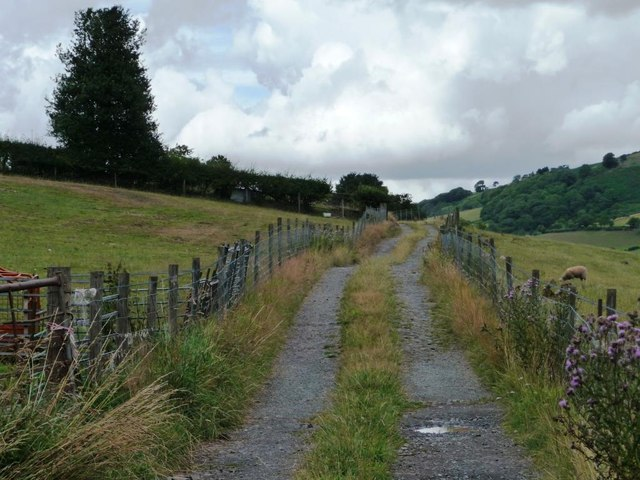 The long track to Woodlands Farm