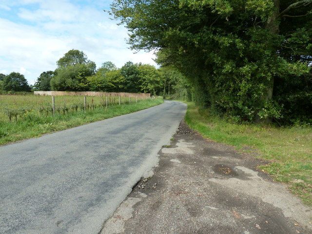 Plummerden Lane approaching North Lodge