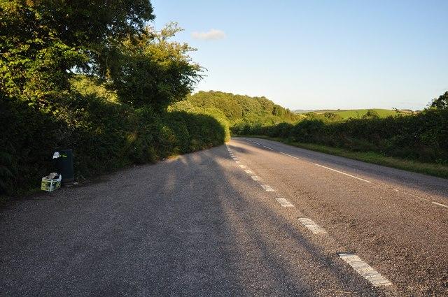 Mid Devon : Stoney Hill Lane