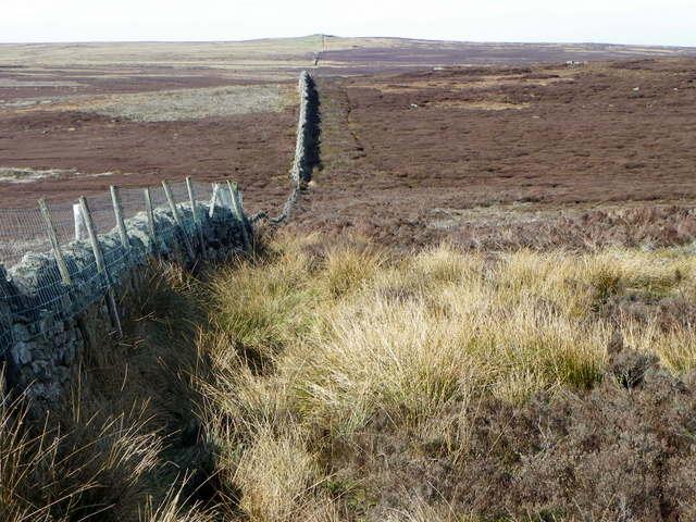 Boundary wall, Lofthouse Moor