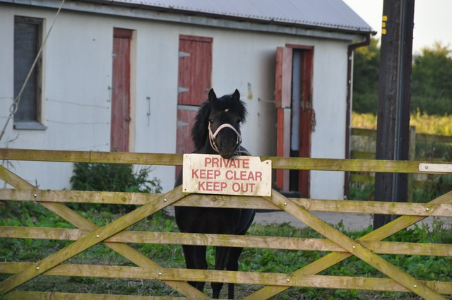 Mid Devon : Horse & Stables