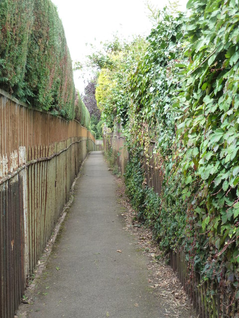 Path by the River Exe