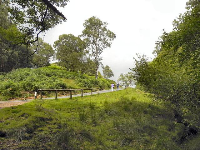 The Road to Levisham