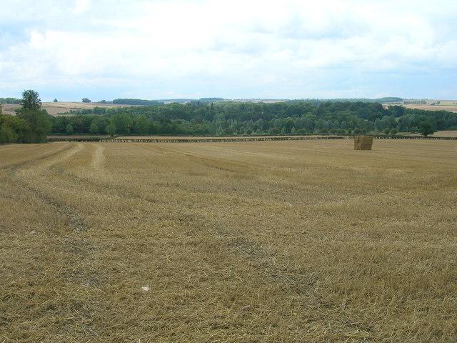 Farmland, Thornbury Hill Farm
