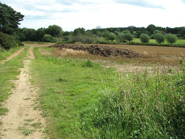 View towards Sizewell Belts, Leiston