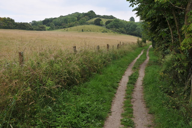 The Thames Path near Gatehampton