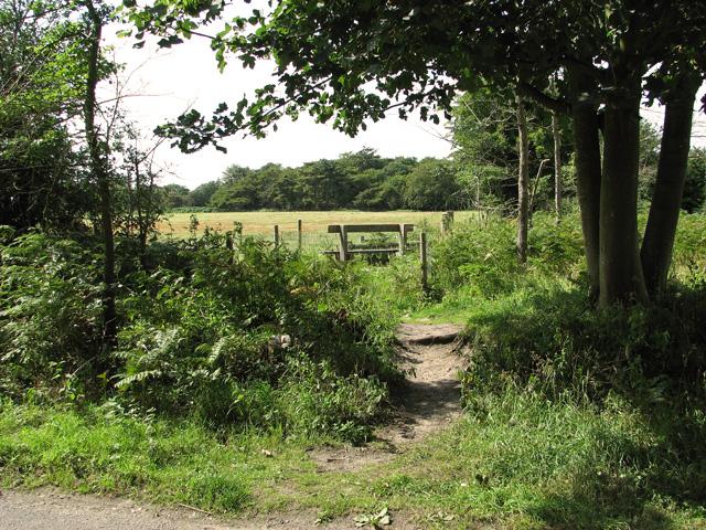 Path to Sandlings Walk, Minsmere