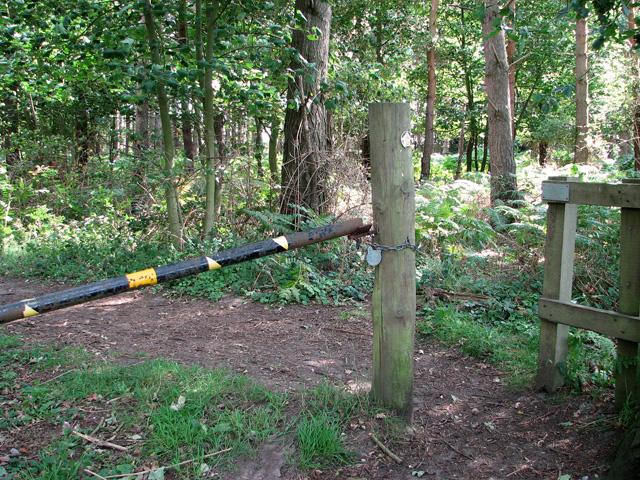 Path to Dunwich village