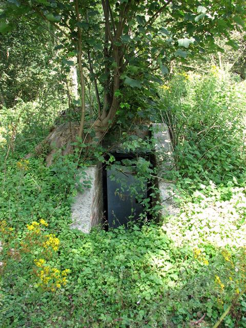 WWII air raid shelter beside Minsmere Road