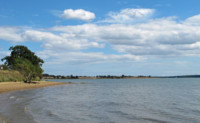 Holbrook Bay looking east
